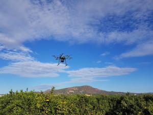 Drones e inteligencia artificial para obtener mejores rendimientos en el campo
